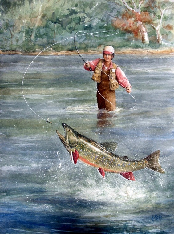 Brook Trout (149K)